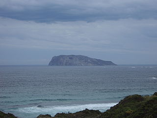 Chatham Island (Western Australia)
