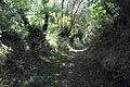 Chemin creux-BREST Saint-Pierre.jpg