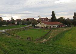Chesalles-sur-Moudon.JPG