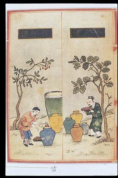File:Chinese Materia Dietetica, Ming; Alcoholic beverages Wellcome L0039398.jpg