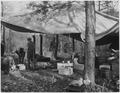 Civilian Conservation Corps - NARA - 197189.tif
