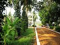 Coconut Research Centre (4583152197).jpg