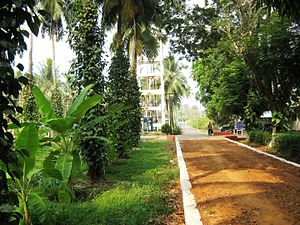 Kasaragod - Central Plantation Crops Research Institute