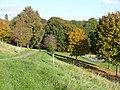 Coed Melyn Park, Glasllwch - geograph.org.uk - 621882.jpg