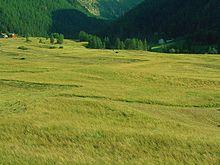 Scorcio estivo sui prati di Sant'Orso, ancora oggi sfruttati per raccogliere il fieno per il bestiame