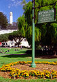Coit Tower from Washington Square.jpg