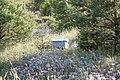 Colmena - panoramio.jpg