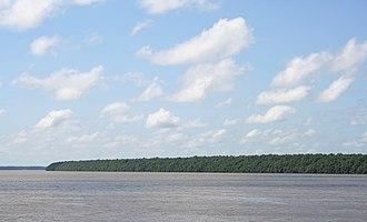Coppename River - The Coppename River
