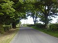 Country Road, Co Meath - geograph.org.uk - 1879884.jpg