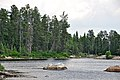 Crab Lake (Ontario, Canada) 6 (32775123207).jpg