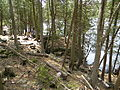 Crawford Lake Conservation Area Ontario, Canada06.JPG