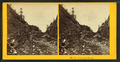 Crawford Notch, from Robert N. Dennis collection of stereoscopic views 9.png