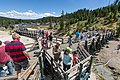 Crowds of people at Mud Volcano (e2241462-ee02-494e-8cde-26162bbb94f4).jpg