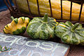 Cucurbita pepo scallop summer squash First Root Farm CSA Twelfth Pickup -7.jpg