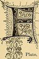 Cyclopedia of practical floriculture (1884) (20639733448).jpg