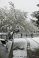 Czerniawa Zdrój - maj - panoramio (4).jpg
