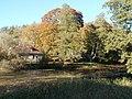 Dīķis Strazdē - panoramio.jpg