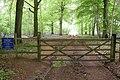 Daglington Walk, Cirencester Park - geograph.org.uk - 170162.jpg