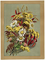 Daisies, Clover, Goldenrod and Autumn Leaves (Boston Public Library).jpg