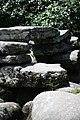 Dartmeet, Dartmoor (3585095823).jpg