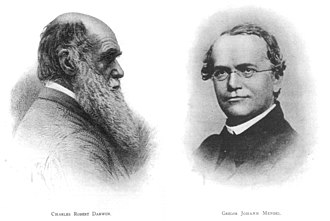 American Genetic Association - Original plates of Darwin and Mendel from Volume 1, Issue 1 of the American Breeders Magazine, 1910.