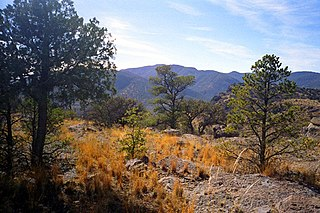 Davis Mountains mountain range in the US state of Texas