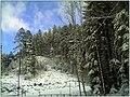 December Black Mountains Foret Noir - Master Mythos Black Forest Photography 2013 High Glotter Valley Sägendobel Pass - panoramio (2).jpg