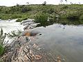 Detalhe da Cachoeira dos Rolinhos - Serra da Canastra.JPG