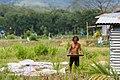 District-KotaBelud Rice-winnowing-with-winnowing-tray-01.jpg