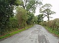 Disused loop of the old A59. - geograph.org.uk - 870306.jpg