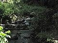 Divoká Šárka - panoramio (20).jpg