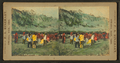 Dog Feast Dance, by Rinehart, F. A. (Frank A.).png