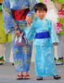 Dragonflies yukata.png