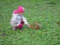 Dziewczynka karmi wiewiórkę w Lazienkach.jpg