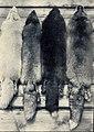 E. Pfitzenmayer, Sibirische Rauchwaren (1908) Kostbares sibirisches Rauchwerk.jpg
