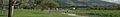 East Bay banner Fremont park.jpg