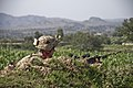 Easy Company assists ANSF mission 130820-A-DQ133-604.jpg
