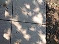 Eclipse shadows (36332390800).jpg