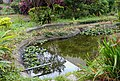 Eco Pond at a Community Park 社區公園生態池 - panoramio.jpg