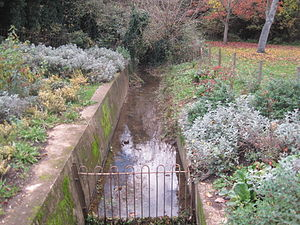 Edgwarebury Brook - Edgwarebury Brook in Edgwarebury Park
