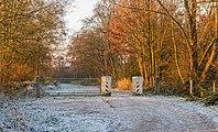 Eerste zonnestralen strijken over een winters landschap. Pad tussen Put van Nederhorst en Langweerderwielen. Locatie, Langweerderwielen (Langwarder Wielen) en omgeving 04.jpg