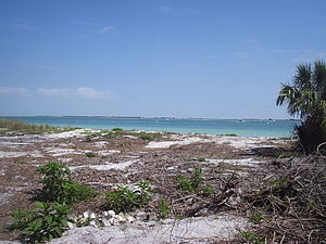 Egmont Key State Park - Image: Egmont Key 03