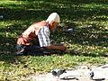 Elderly Man Feeds Pigeons - Tetova (Tetovo) - Macedonia.jpg