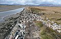 End of Rossbehy Creek - geograph.org.uk - 774179.jpg