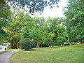 Erfurt - Stadtpark (City Park) - geo.hlipp.de - 40034.jpg