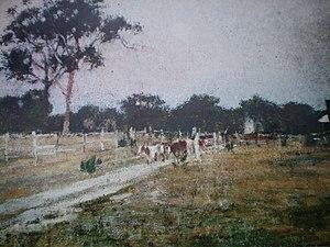 Templestowe, Victoria - Templestowe in 1897