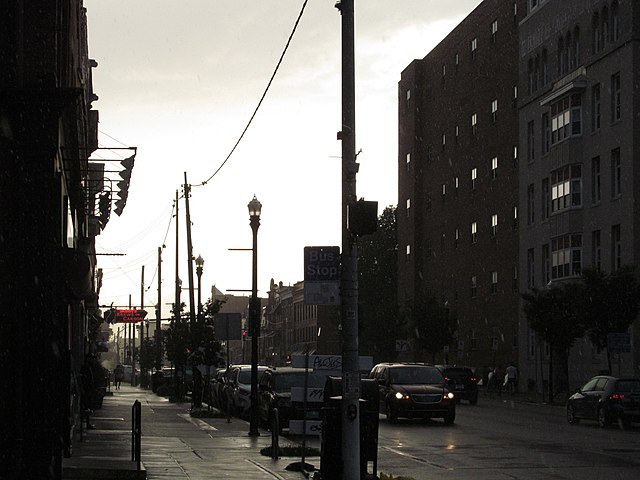 Rain on Carson Street