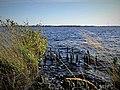 Ewiges Meer in Niedersachsen - Ostfriesland - größter Hochmoorsee Deutschlands Nr 2.jpg