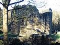 Ewloe Castle, Flintshire - geograph.org.uk - 285171.jpg
