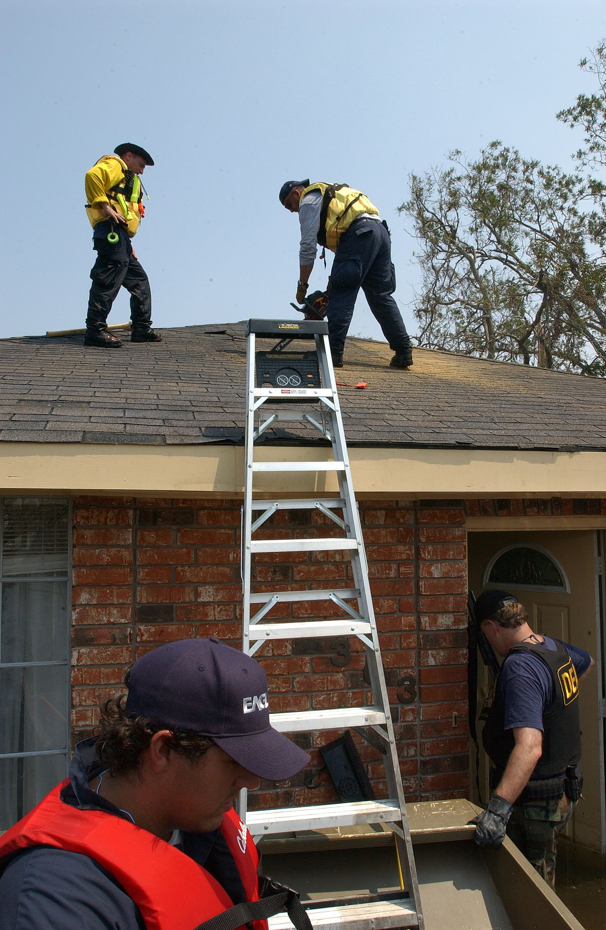 ladder - Wiktionary